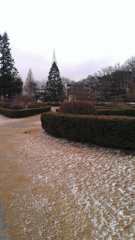 Snow trail to class